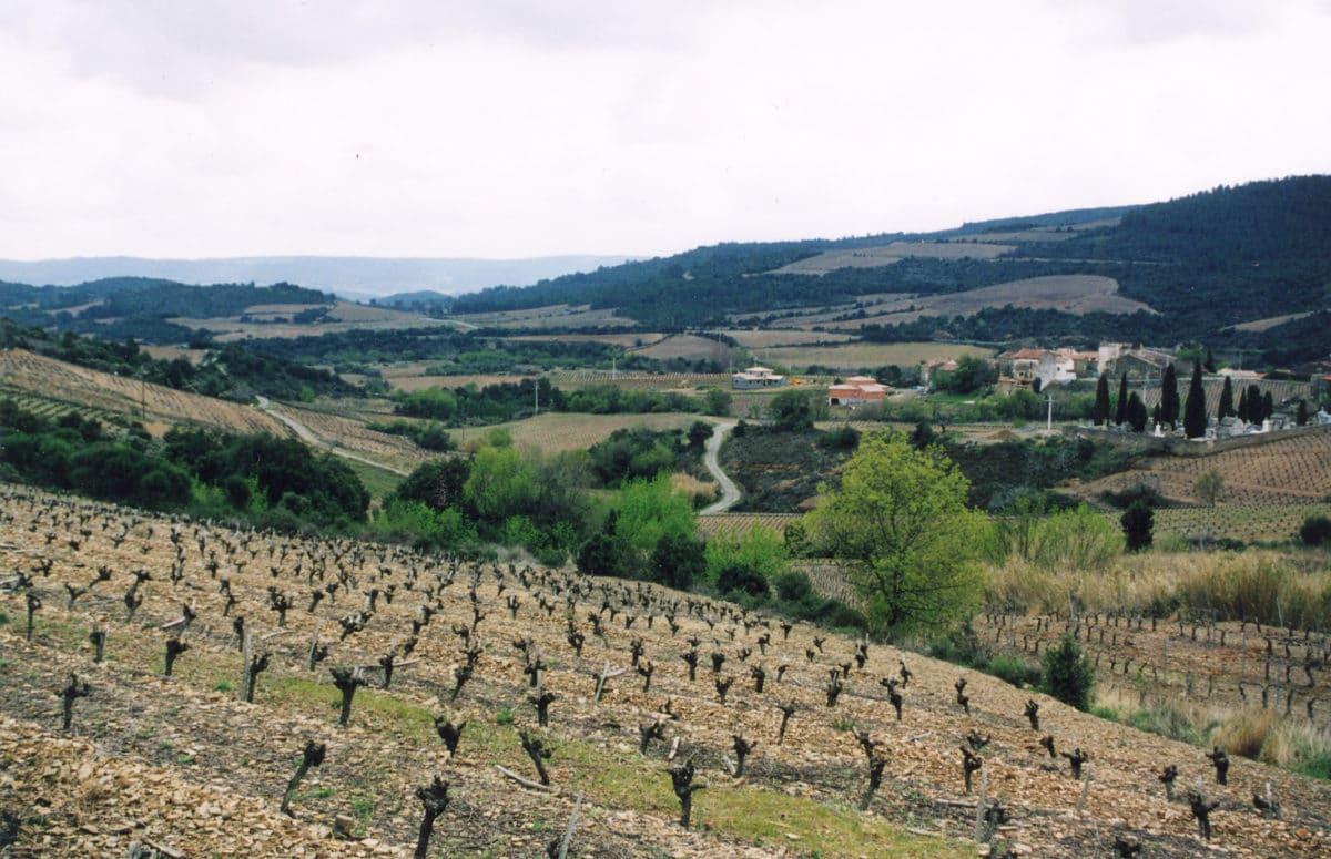 Oplev toscansk vin i Danmark