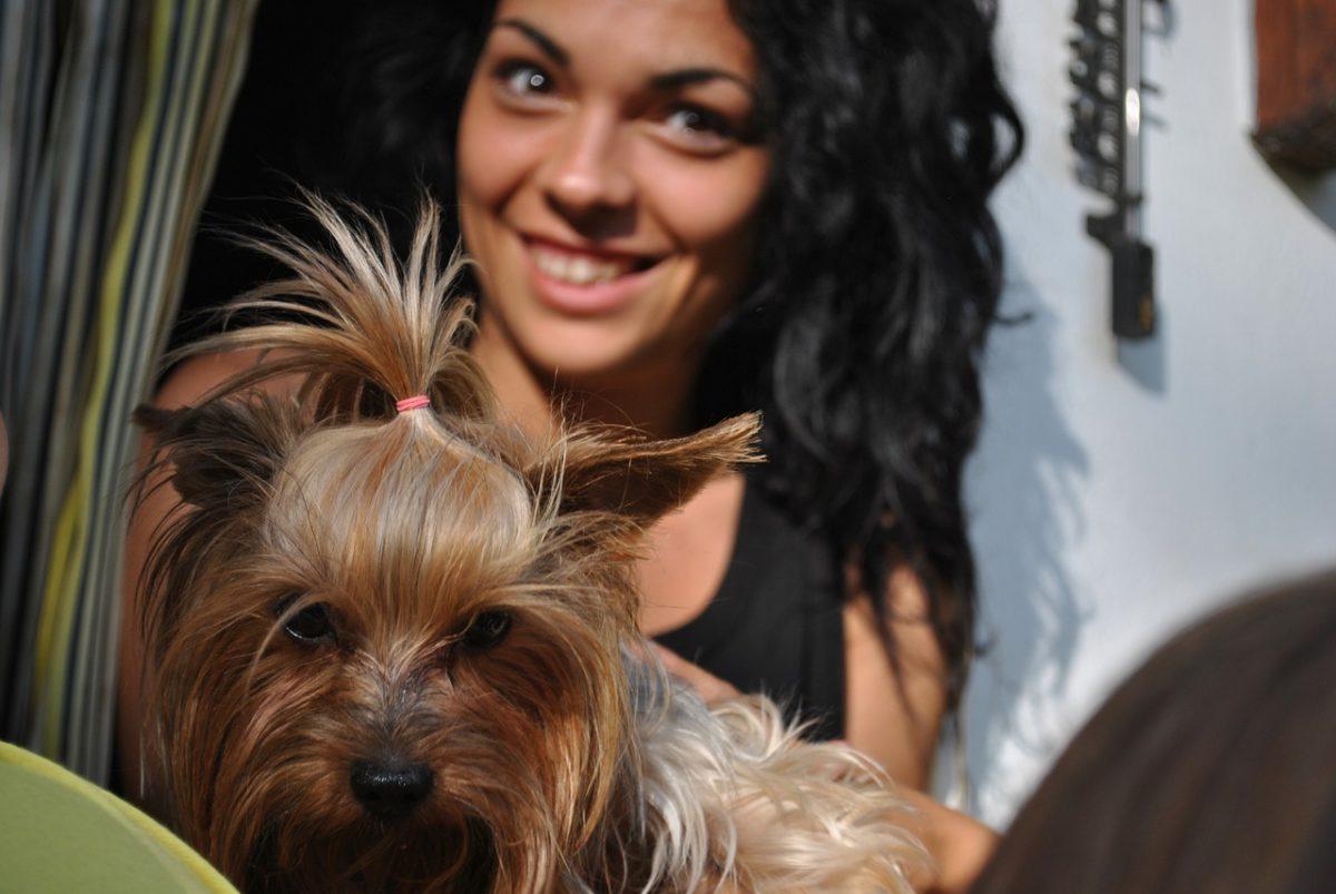 Med en Buddybox kan din hund blive forkælet på abonnement.