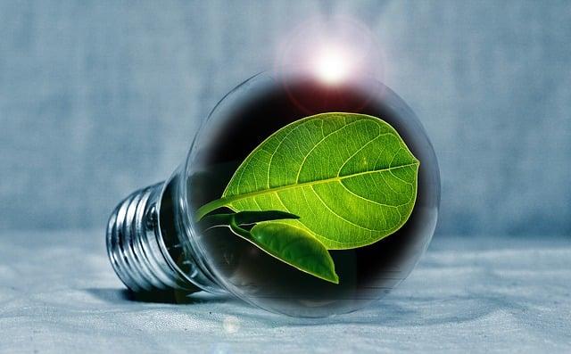 Sådan opnår du et mere miljøvenligt forbrug i din familie