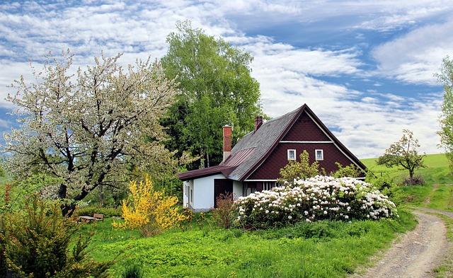 Drømmer du om en rolig have?