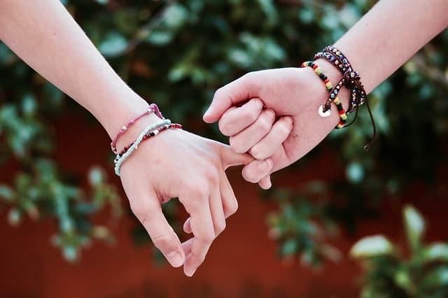 Hvad er venskab?