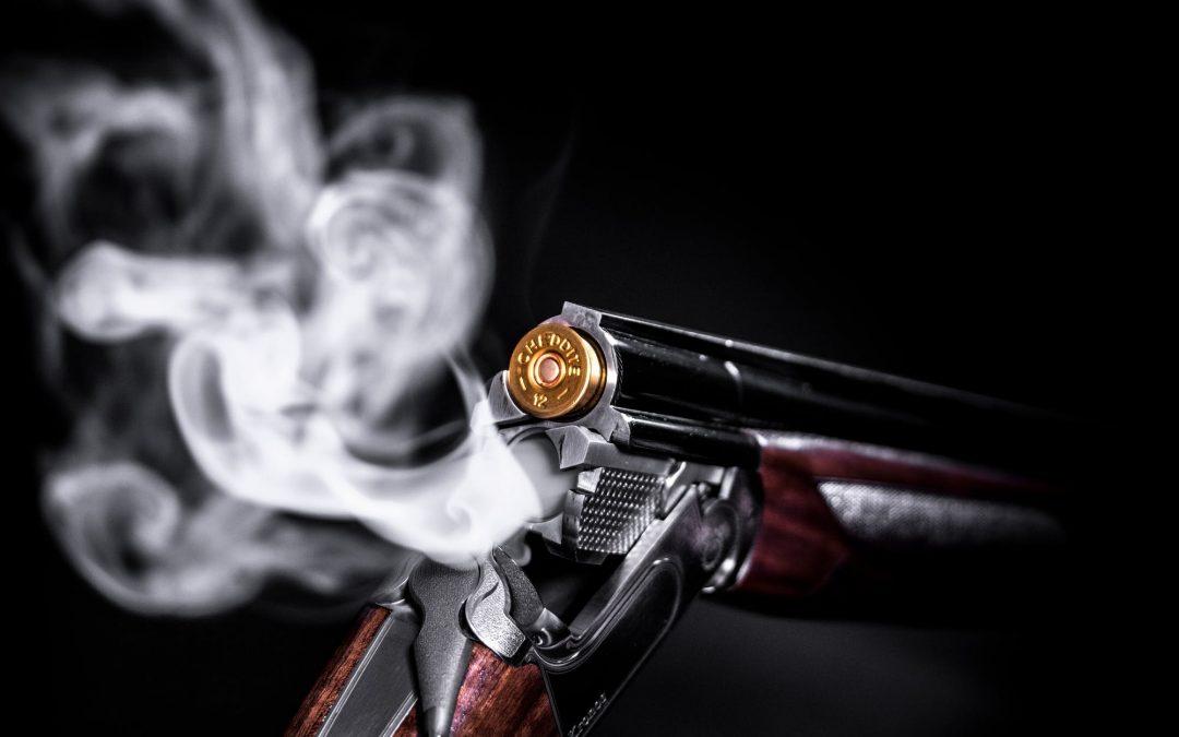 Find det bedste pcp luftgevær til prisen på nettet