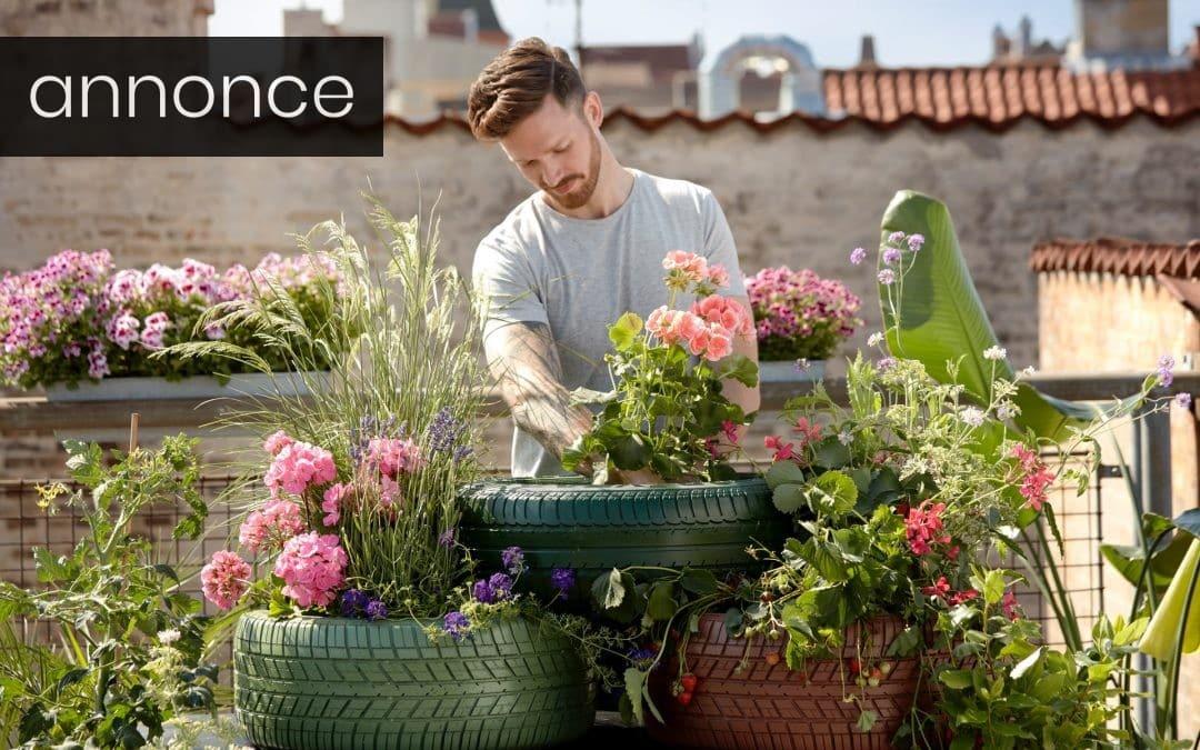 Brug for hjælp til at gøre haven sommerklar?